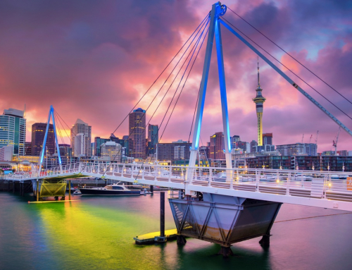 New Zealand Government Pledges To Go Carbon Neutral in Just Five Years